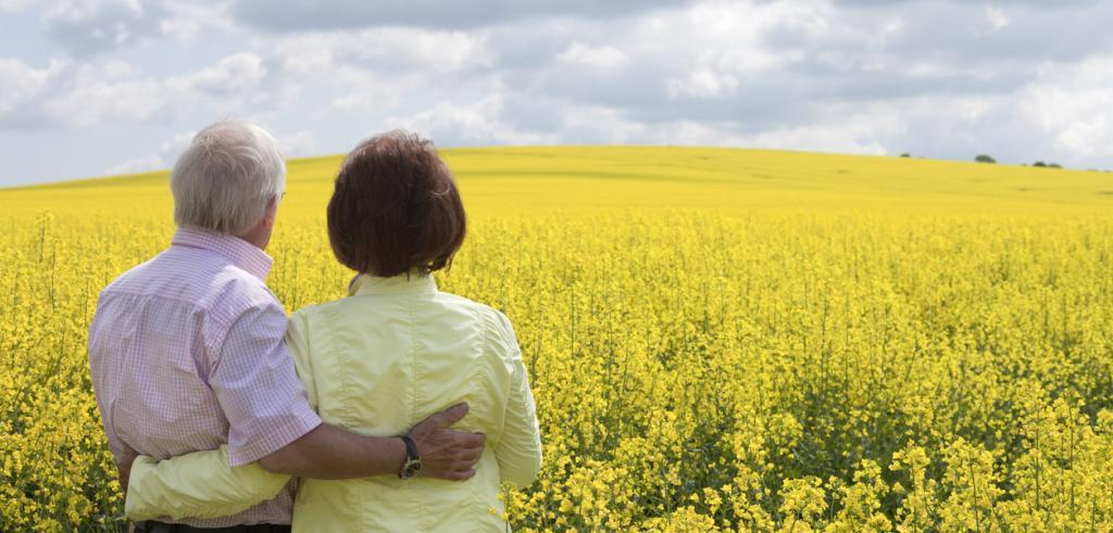 Retired couple in flower field